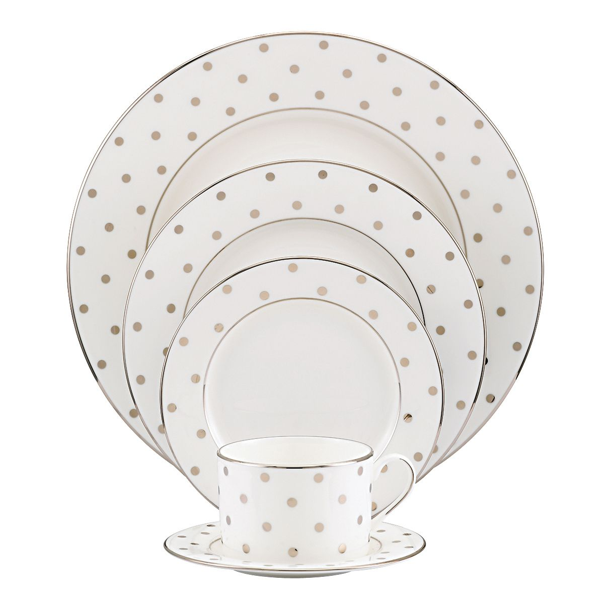 Larabee Road 5 Piece Place Setting by Kate Spade New York