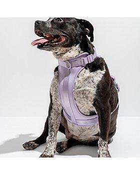 Wild One - Cushioned Dog Harness