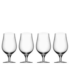 Orrefors - Orrefors Beer Collection Taster Glass, Set of 4