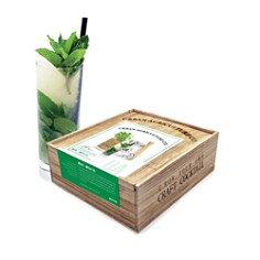Urban Agriculture Grow Your Own Craft Cocktail Kit, Mint Mojito - Bloomingdale's_0