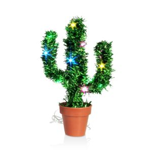 Dci Holiday Cactus