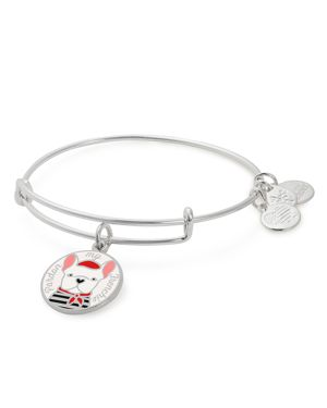 PARDON MY FRENCHIE COLOR INFUSION CHARM BANGLE