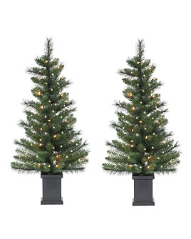Gerson Company - Gerson Company 4 ft. Sycamore Spruce with Clear Lights (Set of 2)