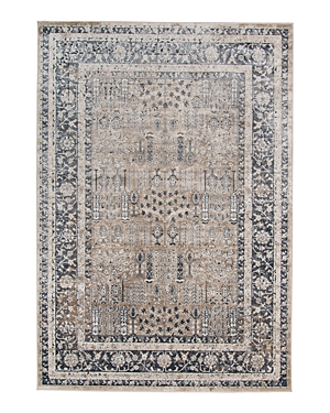 Amer Rugs Belmont Blm-4 Area Rug, 3\\\'11 x 5\\\'11-Home