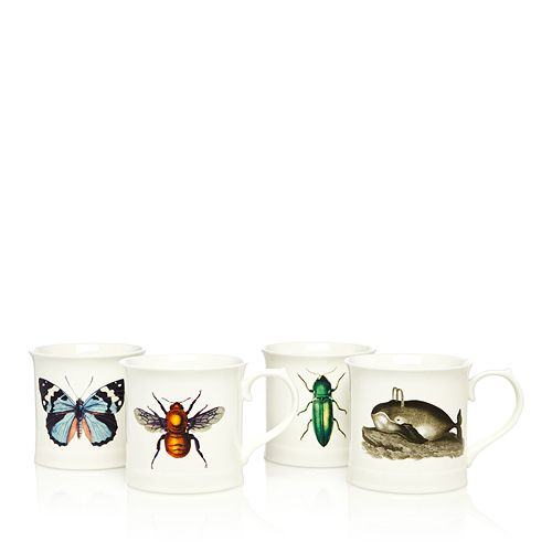 Magpie & Jay - Curios Mug Collection