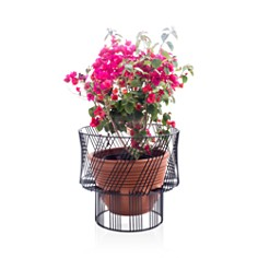 Bend - Plant Stand