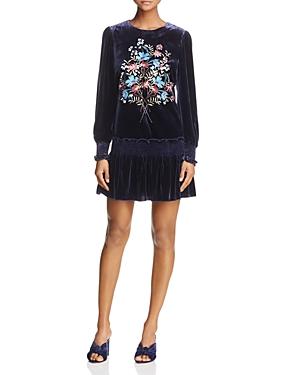 Parker Carmindy Floral-Embroidered Velvet Dress