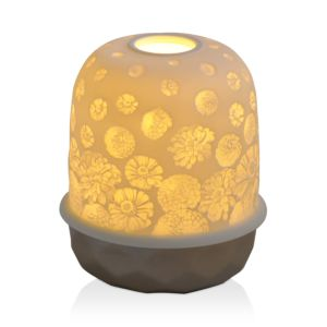 Bernardaud Lampias Led Silver Zinnias Light